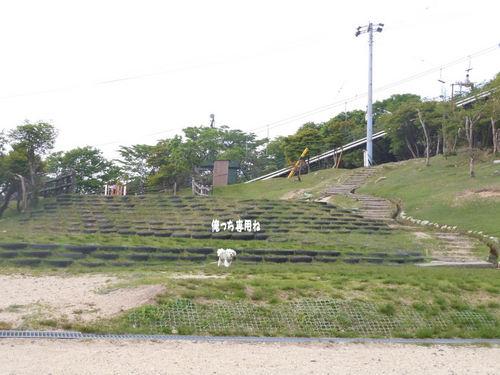 DSCN1064.JPG